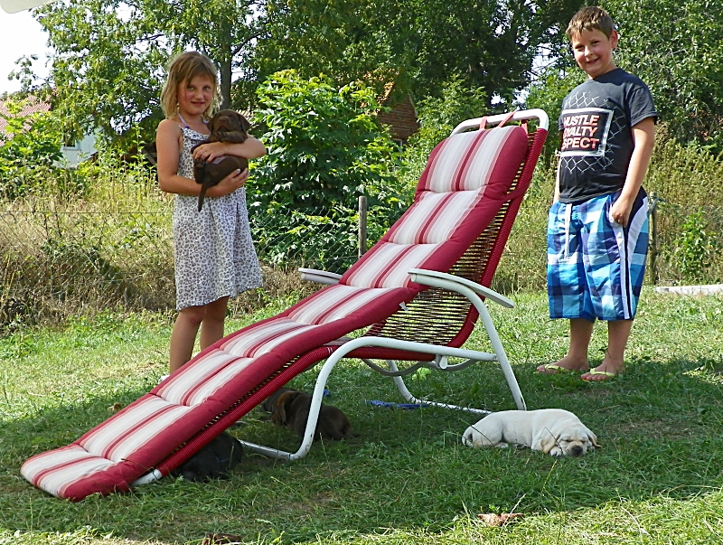 Spielen mit Nachbarkindern